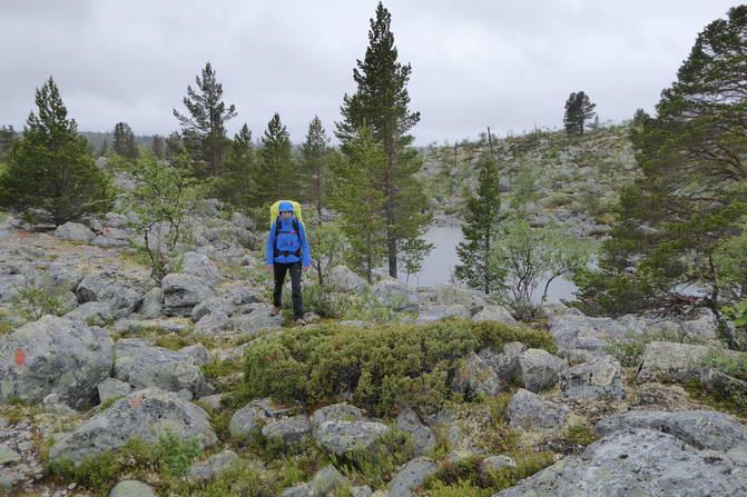 Strecke Fjällnäs - Grövelsjön, Rogen