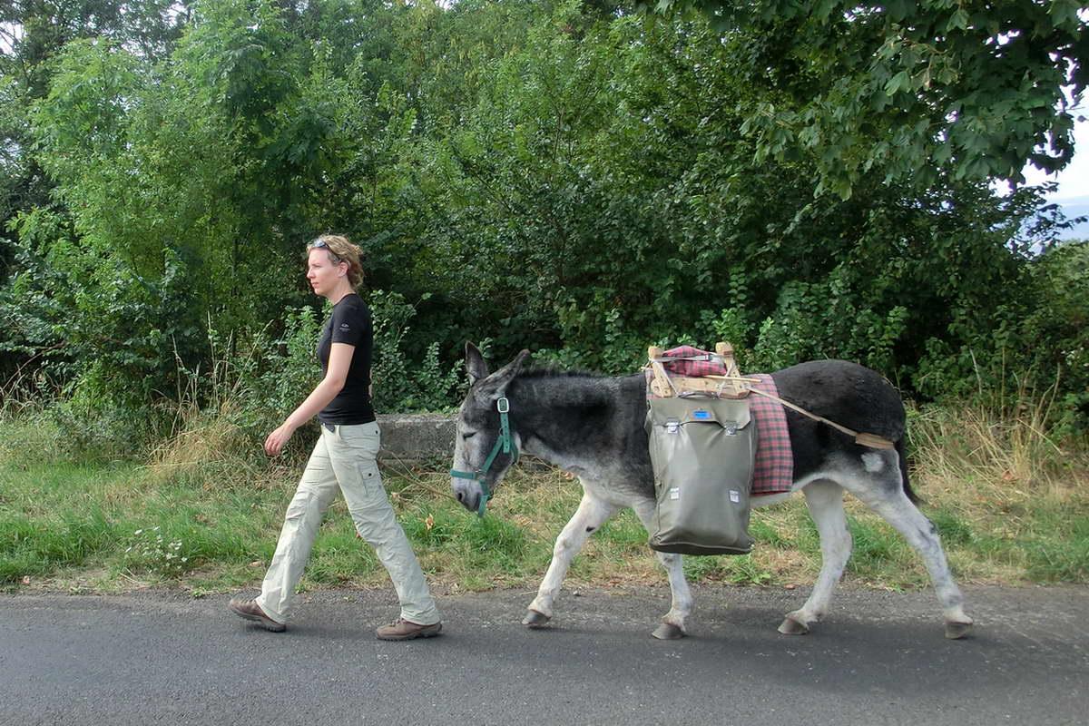 Mit dem Esel wandern - große Schritte