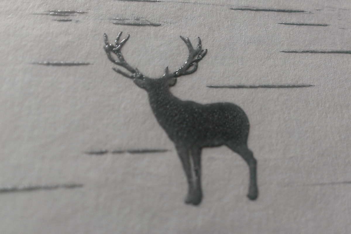 Im Wald: Der Elch auf dem Buch