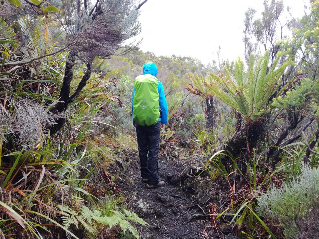 GR R2 auf Réunion - Impressionen des Weges
